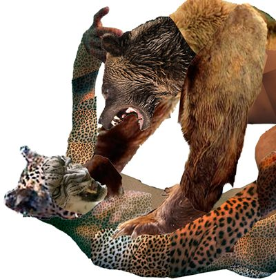 http://centraltattoostudio.com/wp-content/uploads/2015/10/SHOP_template_400x404_Bear-VS-Pussy_72-400x404.jpg